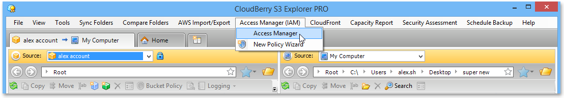 explorer_manage_iam_manage