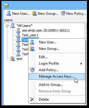 manage_iam_option