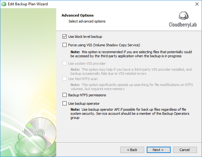 Block level incremental backup software - CloudBerry Backup Advanced Options screenshot