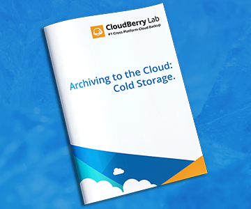 Archiving to the Cloud Cold Storage  sc 1 st  CloudBerry Lab & The True Cold Storage Cost