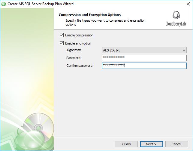 additional encryption for native ms sql backup