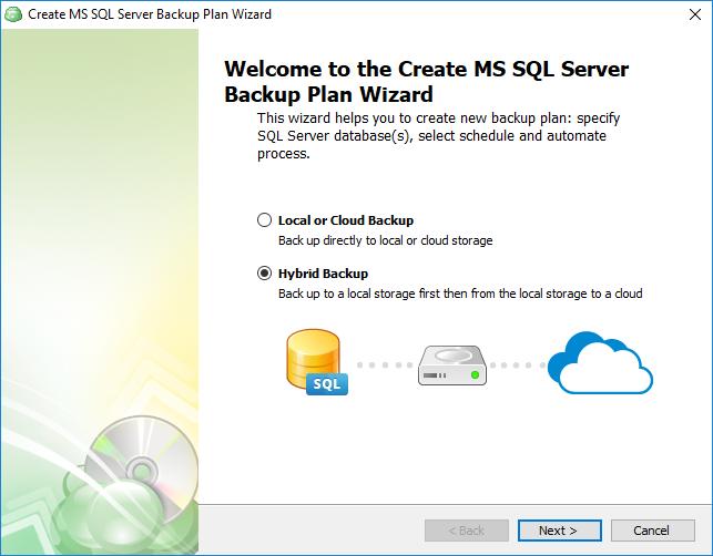 Selecting sql database backup type