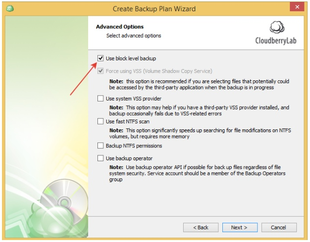 Multiple Scheduled Backups with CloudBerry Backup. Advanced Options Step