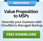 A Value Proposition to MSPs
