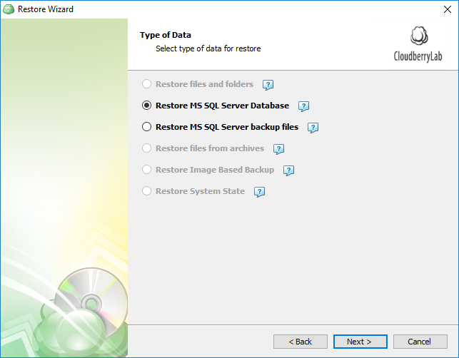 Selecting data type for SQL Server restore