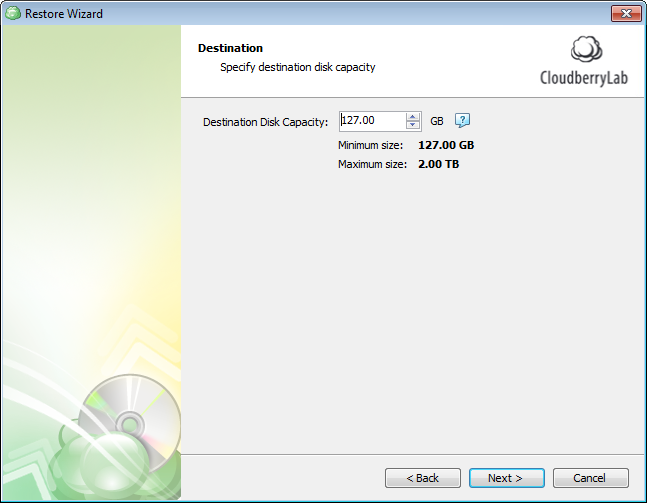 Specify the size of the disk