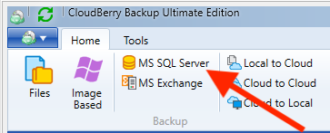 Launch SQL Server database backup in CloudBerry Backup