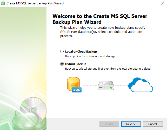 Selecting database backup type for SQL Server database backup