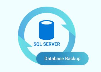 SQL Server Database Backup