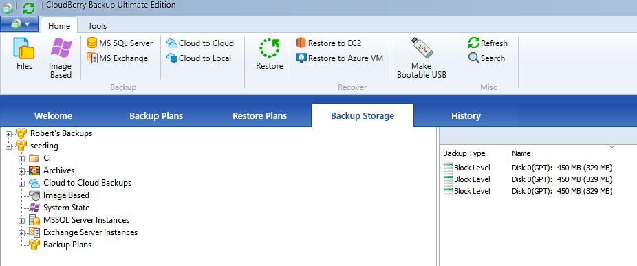 Synthetic image under the Backup Storage tab