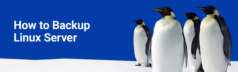 how to backup linux server header with penguins