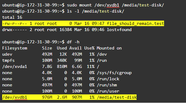 Resize Linux partition: mount the resized volume and check that the data is still there