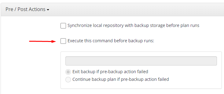 Pre-Action Feature in Managed Backup Service