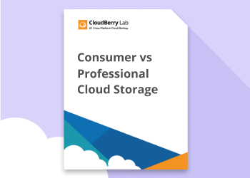 WP Consumer vs. Professional Cloud Storage