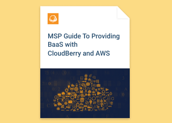 Cloud Backup Software for MSPs and SMBs | CloudBerry Lab