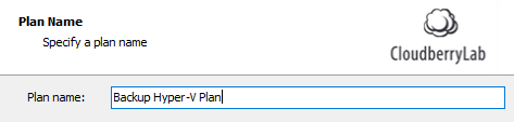 Hyper-V Backup: Plan Naming