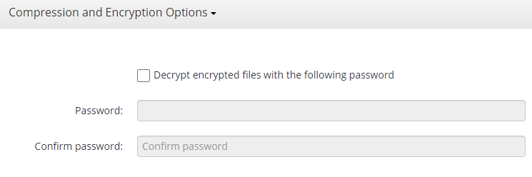 Entering the Password in MSP360 Managed Backup Sevice