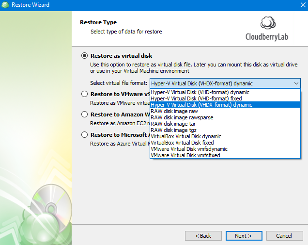 Virtual Disks Recovery Option in MSP360 Managed Backup Service Agent