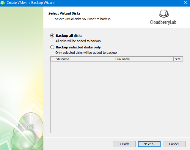 Selecting Disks in MSP360 Managed Backup Web Agent