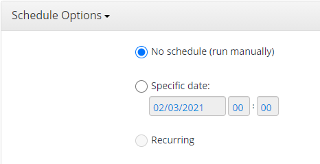 Schedule Options in MSP360 Managed Backup Web Console